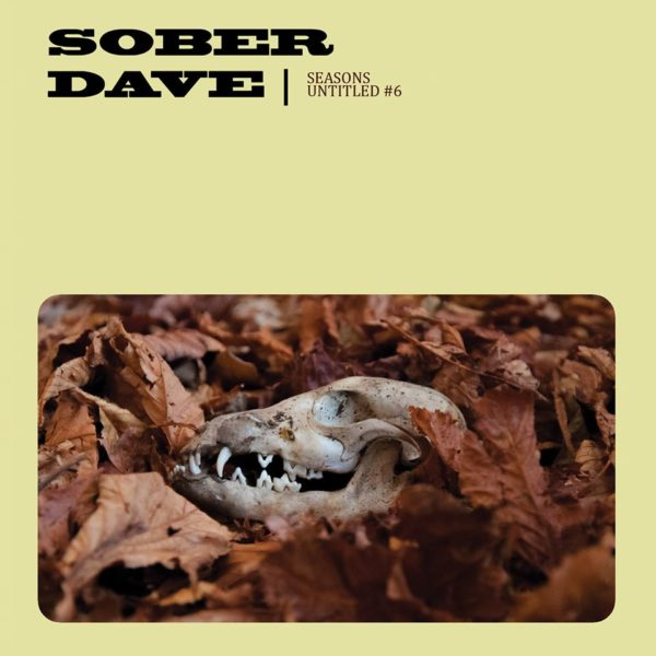 Video Premiere: Sober Dave - 'Seasons'