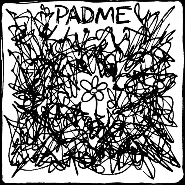 Padme - 'The Fine Line Between Being Conscious and Self Harm'