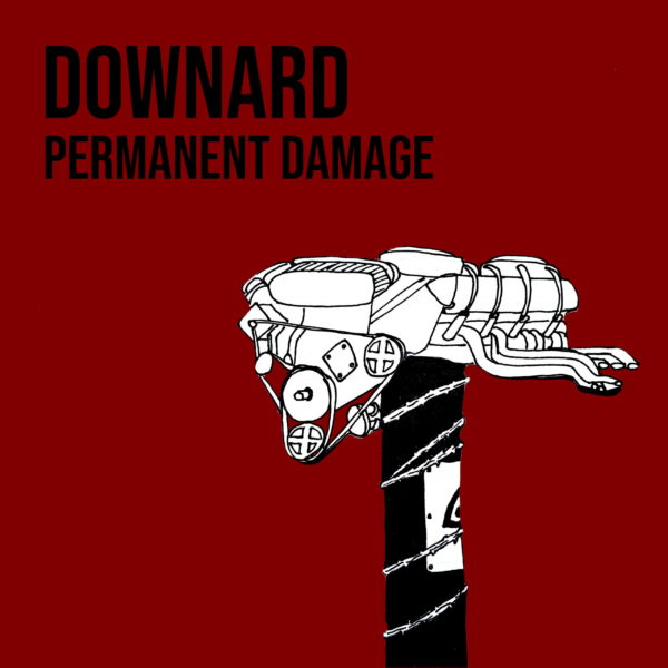 Downard and Their 'Permanent Damage'