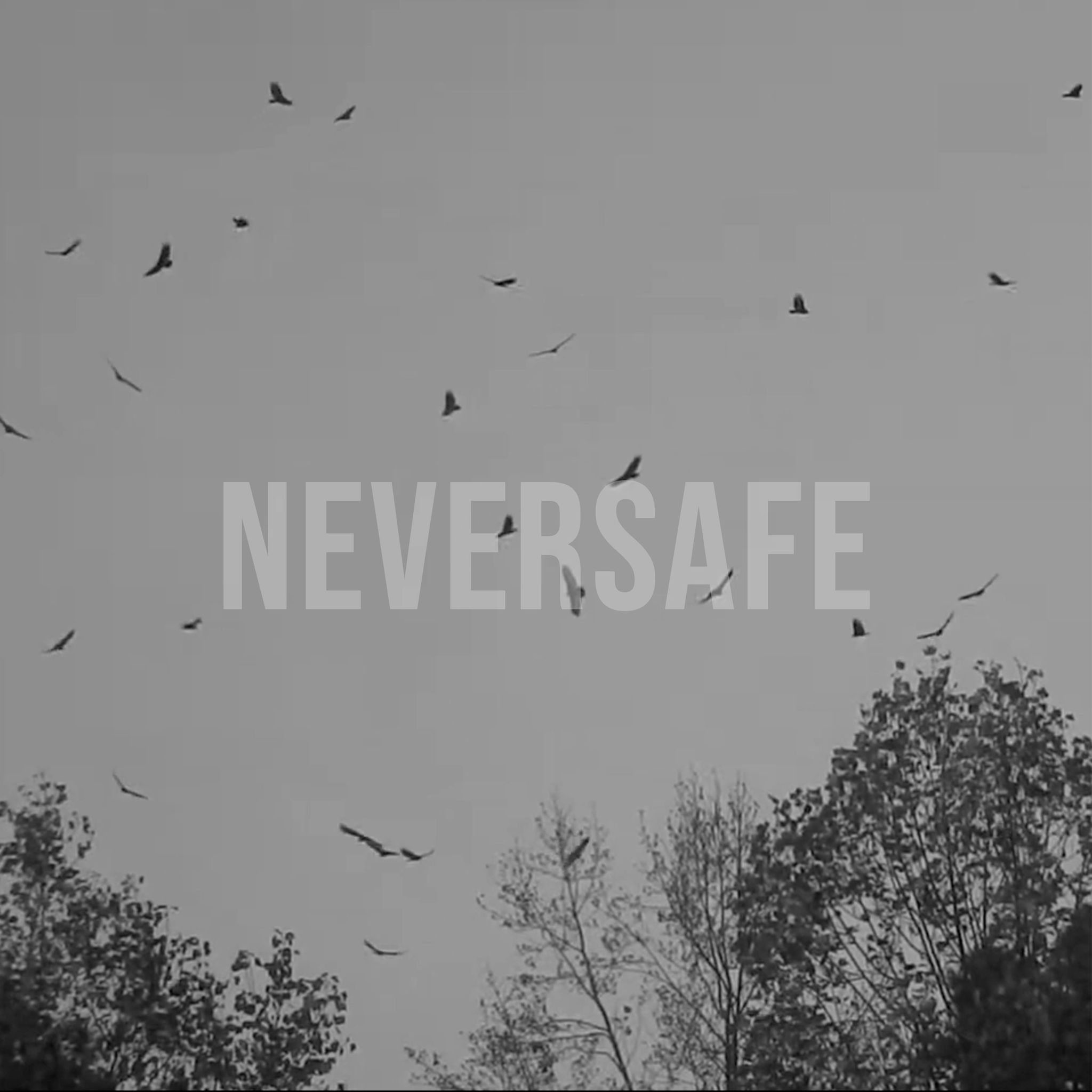 I See Vultures and 'Neversafe'